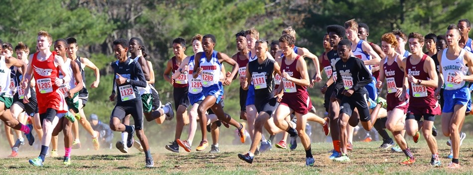 A picture from the 2016 Boys State Championship Cross Country Meet.