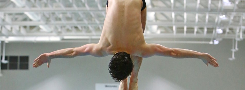 Picture from the Boys State Diving Championships 2016.