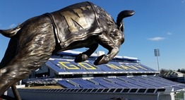 Picture of the Navy mascot statue inside of Navy-Marine Corps Memorial Stadium.