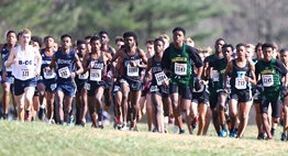 Boys race off from the starting line at the 2018 State Cross Country Championships.
