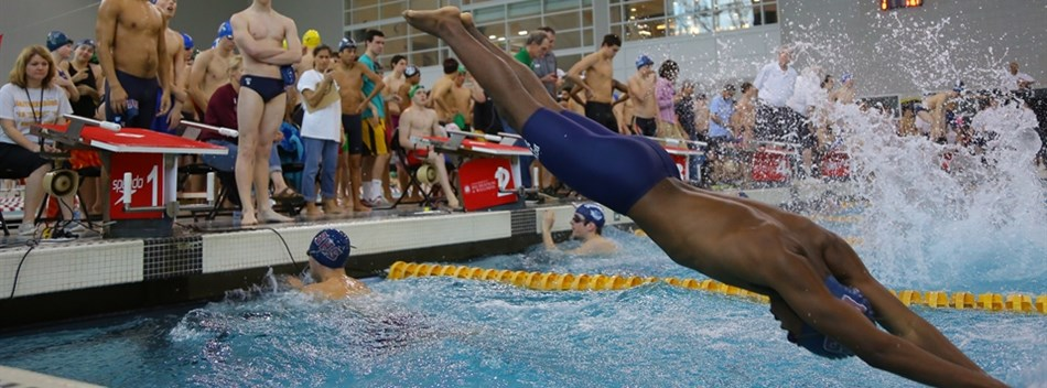 A male swimmer dives into the pool during a relay race at the 2017 State Swimming Championships.