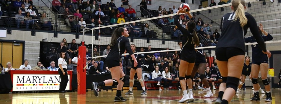 A Northwest player prepares to set the ball against Urbana in the 2108 Class 4A State Volleyball Fin